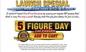 5 figure day scam