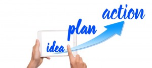 idea plan action to a niche