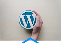 5 Pros and Cons of using WordPress Page Builders