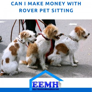 Can I Make Money with Rover Pet Sitting